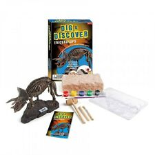 Children's Dig, Discover, Build & Mould Triceratops Dinosaur Craft Play Kit!