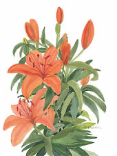 Orange Lilies Watercolor Reproduction Painting  by Wanda's Watercolors
