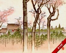 CHERRY BLOSSOMS TREES FOREST JAPANESE WOODCUT PAINTING REAL CANVAS ART PRINT
