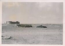 BOUTREKFINE  c. 1935 - Maison et Tente de Nomades  Algérie - P 624