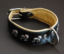 Leder-Halsband Französische Bulldogge, schwarz-natur 50cm x 4cm, french bulldog