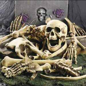 28x Halloween Scattered Bones Scary Skull Decoration Skeleton Party Decor Props