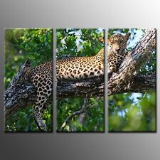 FRAMED Canvas Prints Leopard Picture Animal Painting Wall Art Home Decor-3pcs