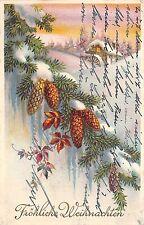 BG4575  weihnachten christmas fir branch  germany greetings