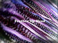 """15 Pc Wide Accent Feather Hair Extenions , Fly Tying, Crafts, 7"""" to 11""""  Purples"""
