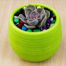 Mini Colourful Round Plastic Plant Flower Pots Home Office Decor Planters
