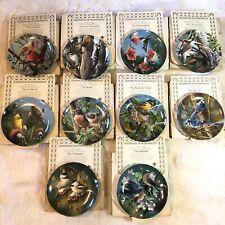 Garden Birds Knowles 10 Kevin Daniel Collector Plates Encyclopedia Britannica A
