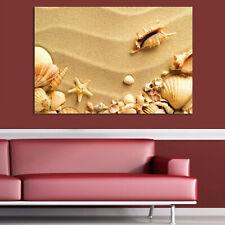Leinwand Keilrahmenbild Kunstdruck Wandbild Canvas Sand & Muscheln 50x70 cm