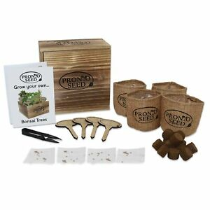 Premium Bonsai Tree Grow Your Own Kit Grow 5 Varieties From Seed Gift Set