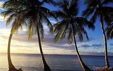 Cancun~Hard Rock, Riviera Maya:  7 nights/8 days VIP all inclusive for 2 Adults