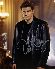 *** DAVID BOREANAZ  ** * (Angel/Bones/Seal Team) Autographed 8x10 RP