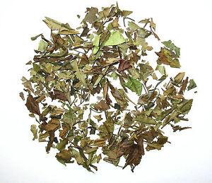 Organic Sowmee white tea loose  leaf tea  Wellness tea 1 OZ
