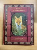 """1910s """"HALF HOURS WITH NATURAL HISTORY - ANIMALS WILD & DOMESTIC"""" HARDBACK BOOK"""
