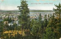 Spokane Washington~Bird's-Eye View Past Tall Evergreen~1910 Postcard