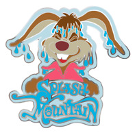 Disney Splash Mountain Pin Brer Rabbit Disney Fantasy Pin