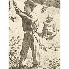 Homer Green Apples Picking Boys 1868 Drawing Wall Art Canvas Print 18X24 In