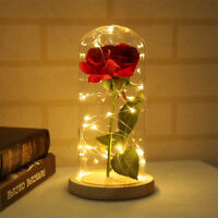 Enchanted Forever Rose Flower In Glass LED Light Wedding Party Home Table Decor