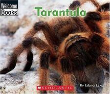 Tarantula (Welcome Books: Animals of the World)