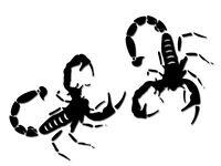 050171 ADESIVO Scorpione nero 150 mm 2 PEZZI UNIVERSALE per TUTTE le SUPERFICI