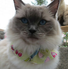 BIRD SAVER cat collar Save Birds - Protect Cats - Hi Viz collars REG.DES:6084012