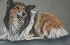 Charming Portrait of a Collie Dog Pastel Painting L.G. Fox 1993 British School