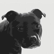 STAFFORDSHIRE BULL TERRIER DOG FINE ART PRINT - Staffie - Stafford - Staff