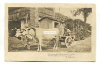 Italy - oxen cart - old postcard