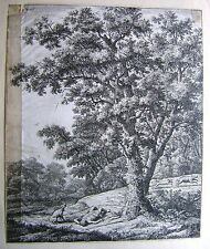 ETCHINGS DUTCH DEATH OF ADONIS (HOLSTEIN130) LANDSCAPE ANTONIE WATERLOO C1650