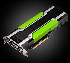 Nvidia Tesla P100 (PNY) | TCSP100M-16GB-PB | 3536403351823, 3536403351830, P100M