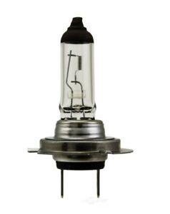 New Cornering Light Headlight Bulb For Volkswagen Passat 1999-2017 H770W