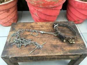 1800's Antique Hand Forged Iron Chain Rope With Leather Pet Dog Belt Brass Bell