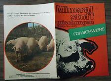 Prospekt Mineralstoffmischungen für Schweine Hackfruchtmast Futtergemisch 1970