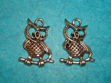 Owl Charms Lot of 2 Hoot Owl Charms Birds Charm Wings Animal Charm Flying Bird