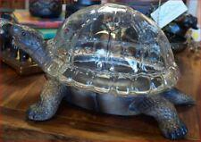 Turtle Terrarium Planter - NEW!