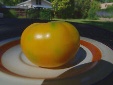 Oaxacan Jewel - Perfect heirloom jewel of a tomato with excellent flavor