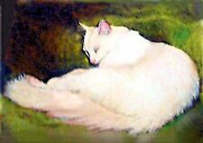 ACEO MINIATURE WHITE CAT ON GREEN BLANKET MINIATURE OIL PAINTING BRADBERRY