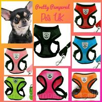 XS Puppy Dog Harness & Lead Set Clothes Small Coats Breeds