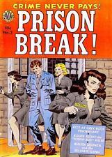 Prison Break #2 Photocopy Comic Book