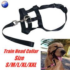 Dog Halter Halti Training Tool Head Collar Pulling Gentle Leader Harness Strap