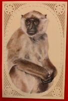 Hand Painted Monkey Animal Miniature Painting India Art Nature Synthetic Ivory
