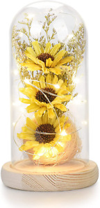 socathey Artificial Sunflower in Glass Dome with Led Light Strip, Enchanted Gift
