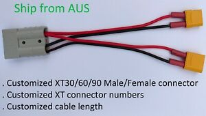 Y cable multi XT30/60/90 M/F to Anderson compatible plug . Customized length.