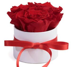 Rosenbox weiss rund 3 Infinity Rosen Blumenbox ewige Rose Geschenk für Freundin