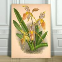 """JEAN LINDEN - Beautiful Yellow Orchid #57 - CANVAS ART PRINT POSTER -18x12"""""""