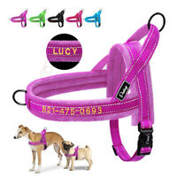 No Pull Front Leading Embroidered Dog Harness Personalised With Name Reflective
