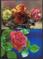 Postcard (x2) Roses. Kruger/Floral series. Unused.
