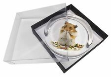 Lunch Box Hamster Glass Paperweight in Gift Box Christmas Present, HAM-1PW