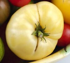 White Queen Tomato - 20 Seeds - White Beefsteak