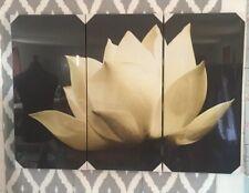 "NEXT LARGE 3 Canvas Wall Print Art White Flower,  Each Canva 43""x23"" BNWT-  B599"