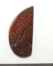 Dinosaur Bone Free Form Cabochon 32x15mm with 5mm dome From Utah (10241)